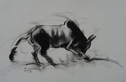 Bull by N S Manohar